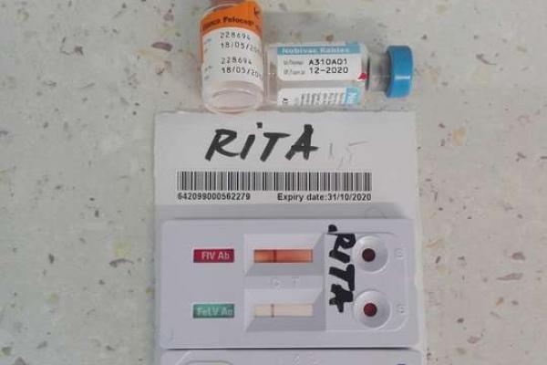 rita-2A7AFBD24-5549-ADBB-CA3F-516B4401EA92.jpg