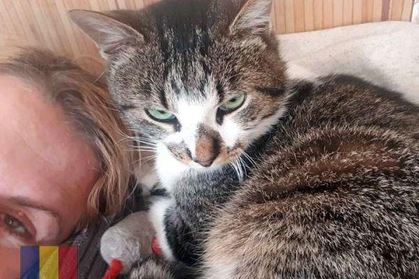 cats-66D4EE1C0A-6745-4968-1511-1041888A6006.jpg